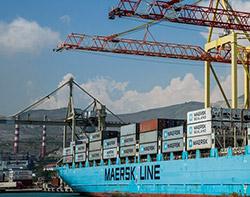 Análisis de las exportaciones cárnicas