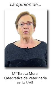 Tribuna opinión Maria Teresa Mora